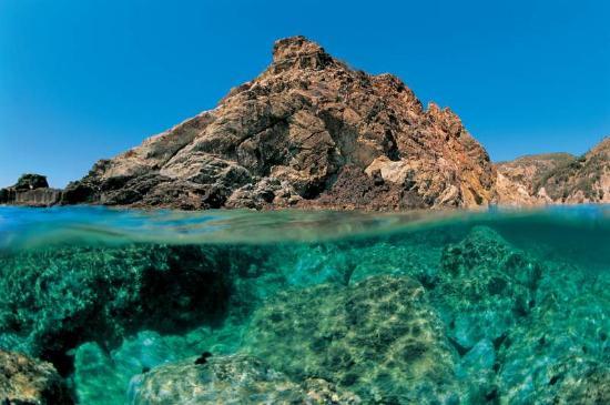 Giannutri snorkeling tour